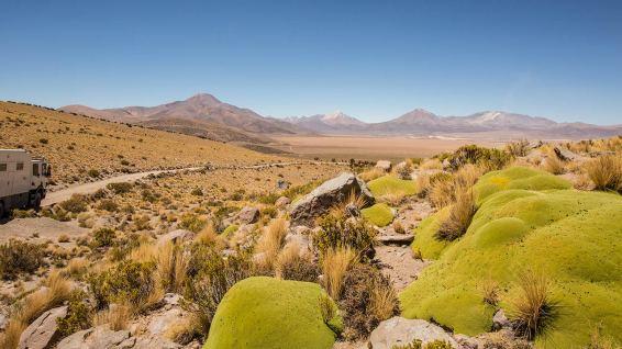 Tolle, endlose Strasse im Altiplano.