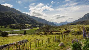 Sieht ähnlich aus wie in der Schweiz: saftiges Grün im südlichen Teil der Carretera Austral.
