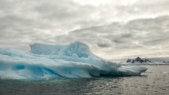 Antarktis: nur Eis und Schnee?