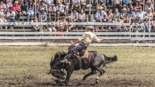 Je mehr sich das Pferd zur Wehr setzt, desto besser wird der Ritt bewertet.