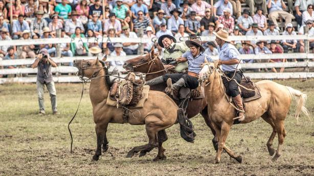 Nach einer bestimmten Zeit müssen die Reiter vom Pferd geholt werden.