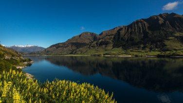 Es folgen Wanderungen beim Lake Wanaka.
