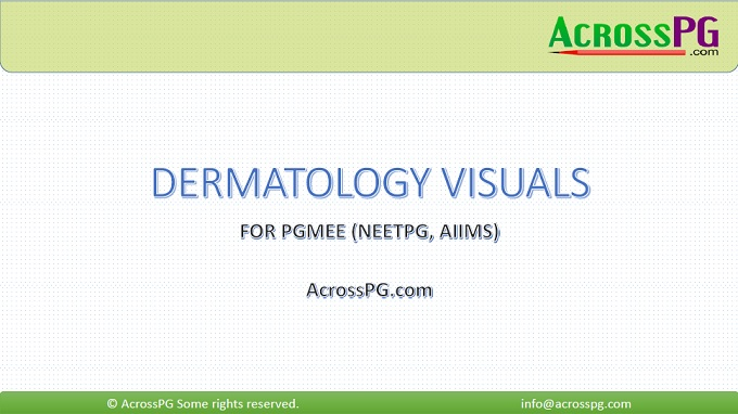 dermatology visuals cover
