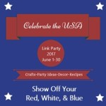 Celebrate the USA Party Button