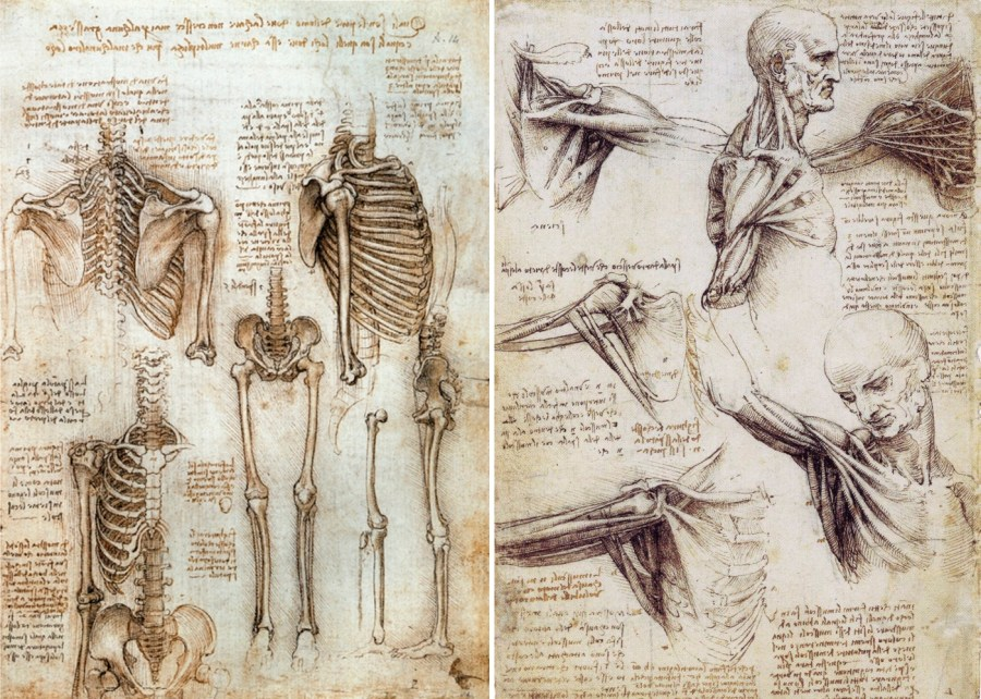 davinci diagrams