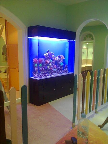 acrylic-fish-tank-008