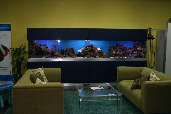 acrylic-fish-tank-022