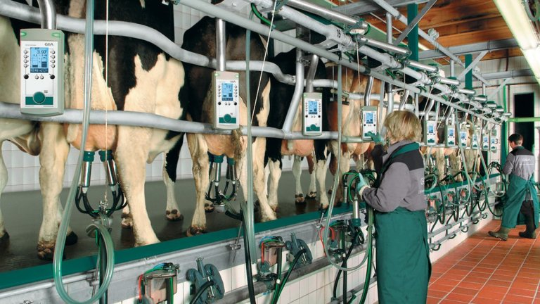 DairyFarming_Euroclass_800_850_1_2_1200x675px.jpg