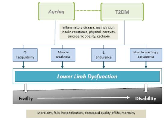 dieta del diabete mellito di tipo 2 fisterra