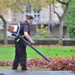 leaf blowers threats to