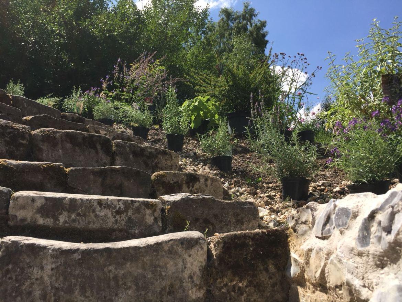 MB-steps
