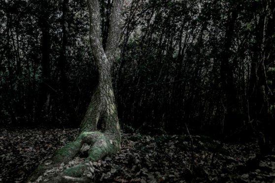 FILEMONE E BAUCI Metamorfosi – Fotografie di Ottavio Celestino