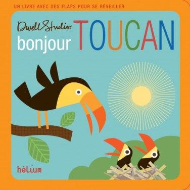 Bonjour, Toucan