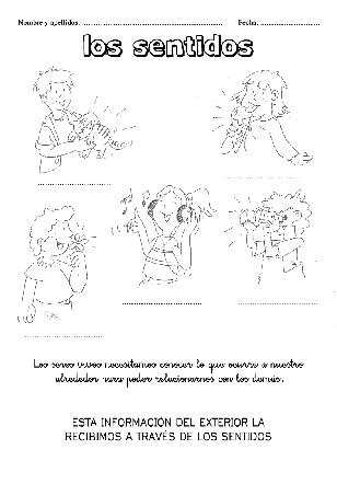 Cuadernillo_Sentidos-1p