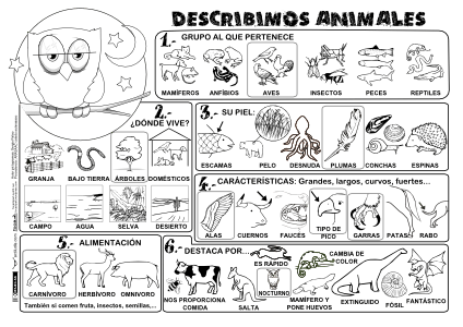 Describimos Animales P BN