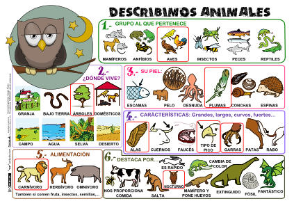 Describimos Animales P