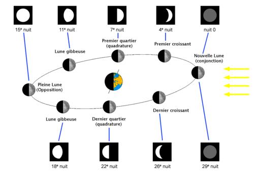 Librito para las fases lunares - Actiludis