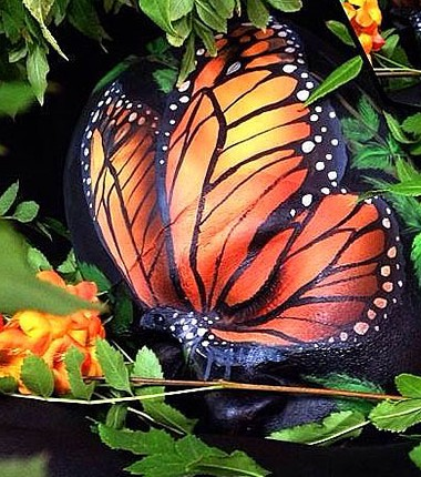 butterfly-optical-illusion
