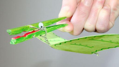 activity-pteranodon