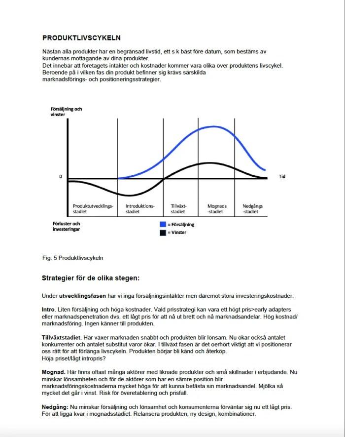 Marknadsplans mallar pdf