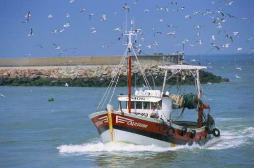 bâteau marin pêcheur