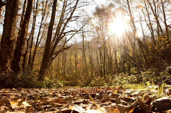 late-season hikes