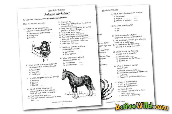 Free Printable Worksheets For Teachers & Parents