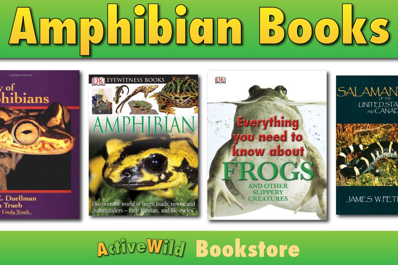 Amphibian Books Books About Amphibians Frogs