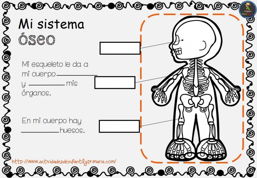 Cuaderno de trabajo COMO FUNCIONA el cuerpo humano (6)