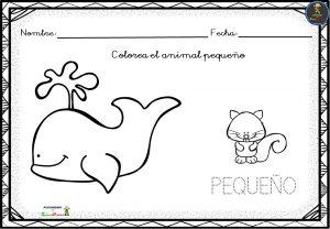 Cuadernillo Para Trabajar Conceptos En Educación Infantil Imagenes