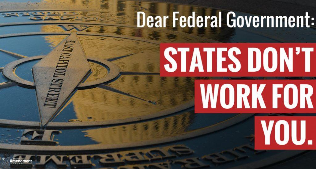 fed govt states