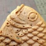【台東区 蔵前 夜の巷を徘徊する】駄菓子問屋『小森屋商店』でマツコさんが買った駄菓子のまとめ・通販方法