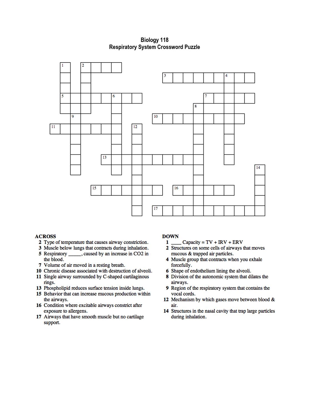 Teacher Worksheet Crossword
