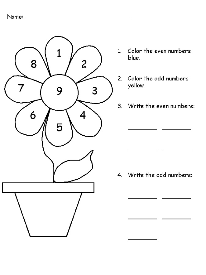 Life Cycle Of A Flower Worksheet For Preschoolers. Life