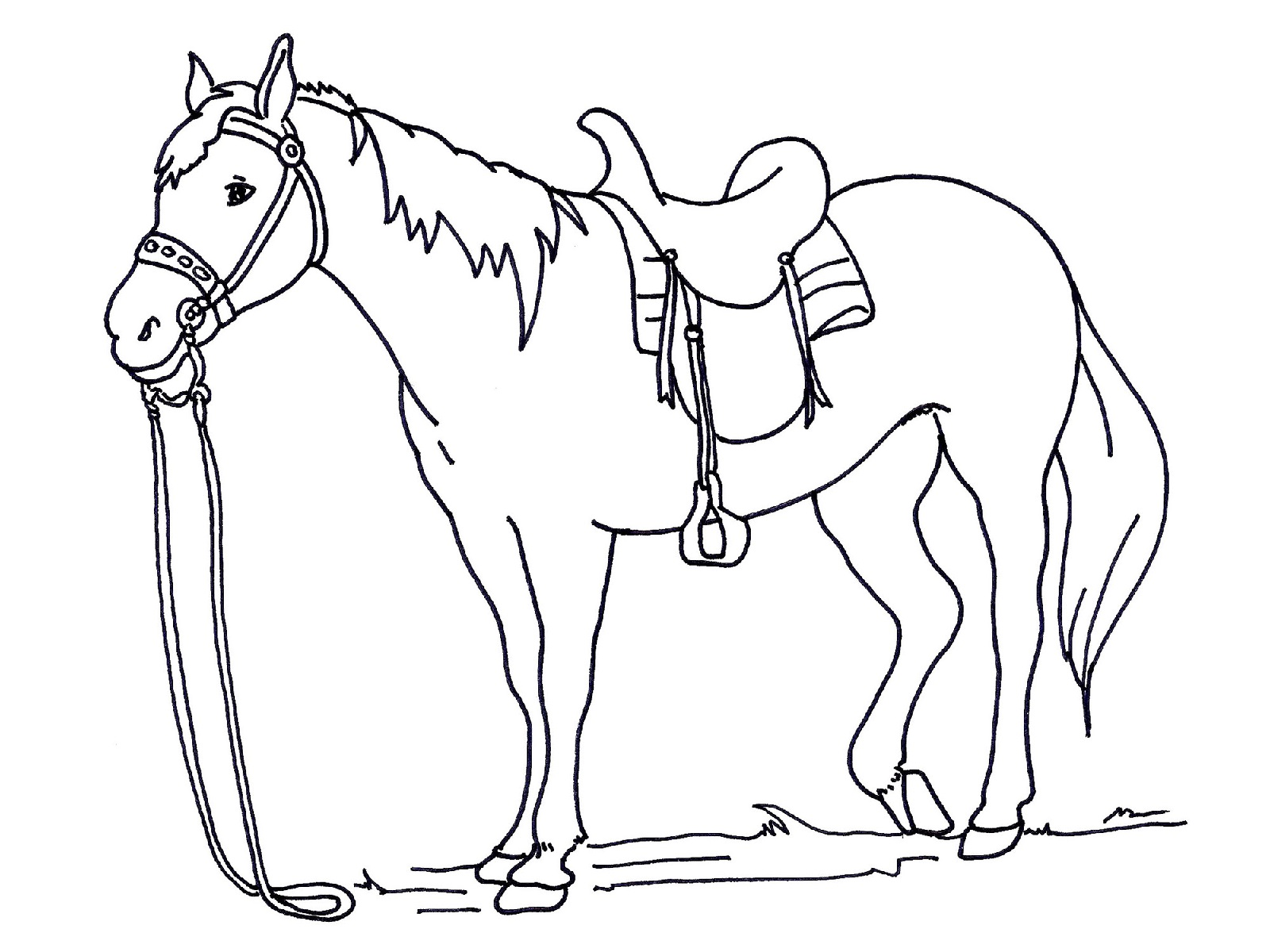 Free And Printable Horse Color Pictures