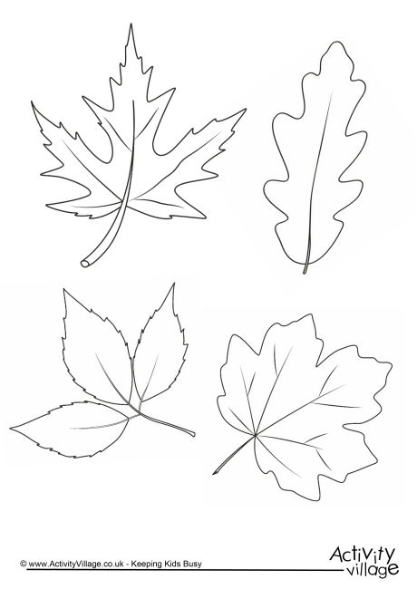 Autumn Leaves Colouring Page