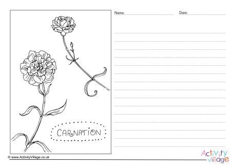 Carnation Story Paper