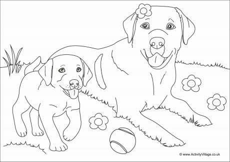 Dogs Scene Colouring Page