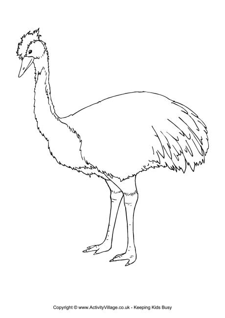 Emu Colouring Page 2