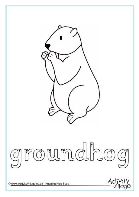 Groundhog Finger Tracing