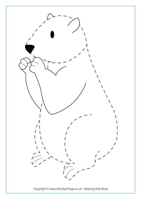 Groundhog Tracing Page