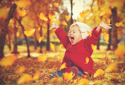 Image result for Autumn