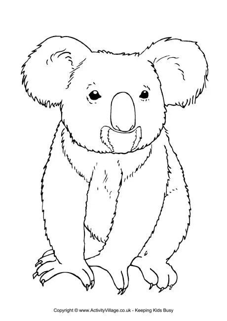 Koala Colouring Page 3