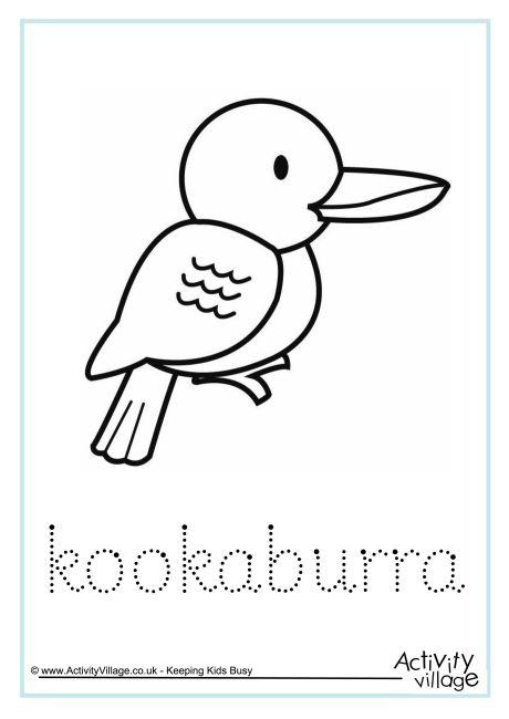 Kookaburra Word Tracing