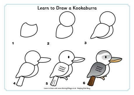 Learn to Draw a Kookaburra