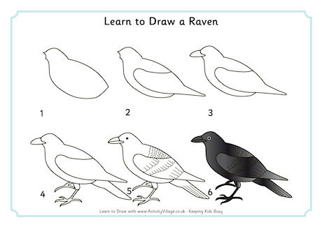Learn to Draw a Raven