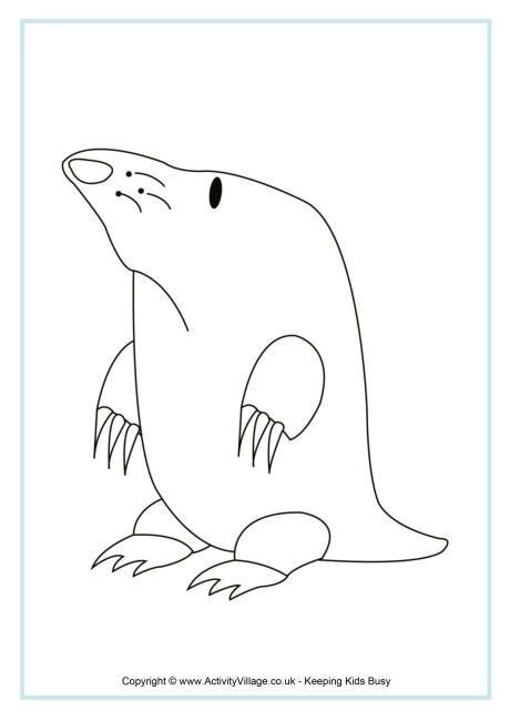 Mole Colouring Page 2