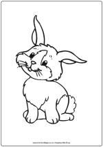 Rabbit Worksheets