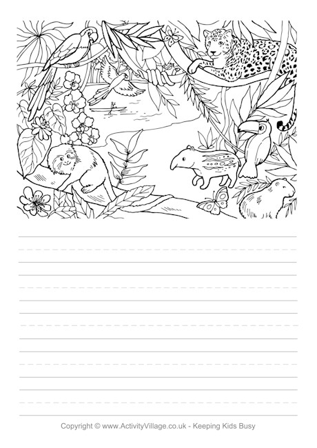 Rainforest Story Paper