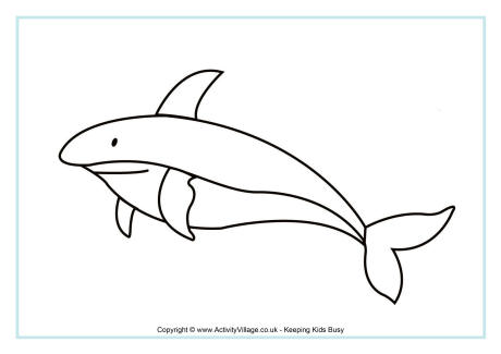 Shark Colouring Page